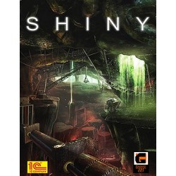 Shiny (Windows)